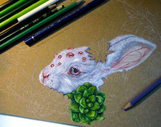 Bunny WIP