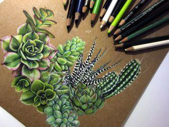 Succulents WIP