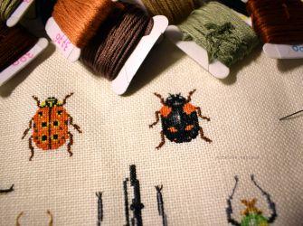 Bugs 31.12