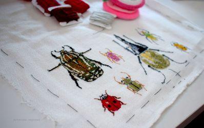 Bugs Progress