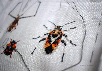 Bugs Progress 10.01