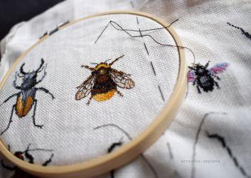 Bugs Progress 31.1