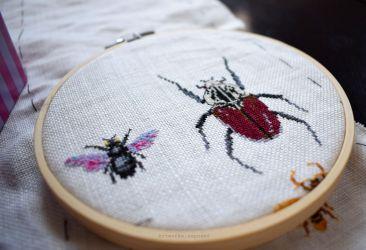 Bugs Progress Jan. 27
