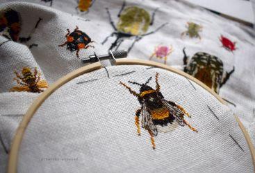 Bugs Progress February 1