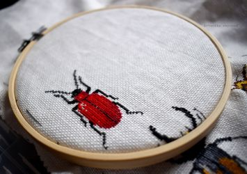 Bugs Progress February 2