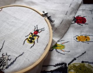 Bugs Progress February 6
