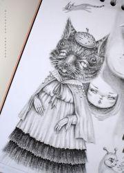 Paterke Kat